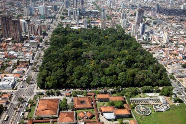 Jardim Botânico da Amazônia Bosque Rodrigues Alves