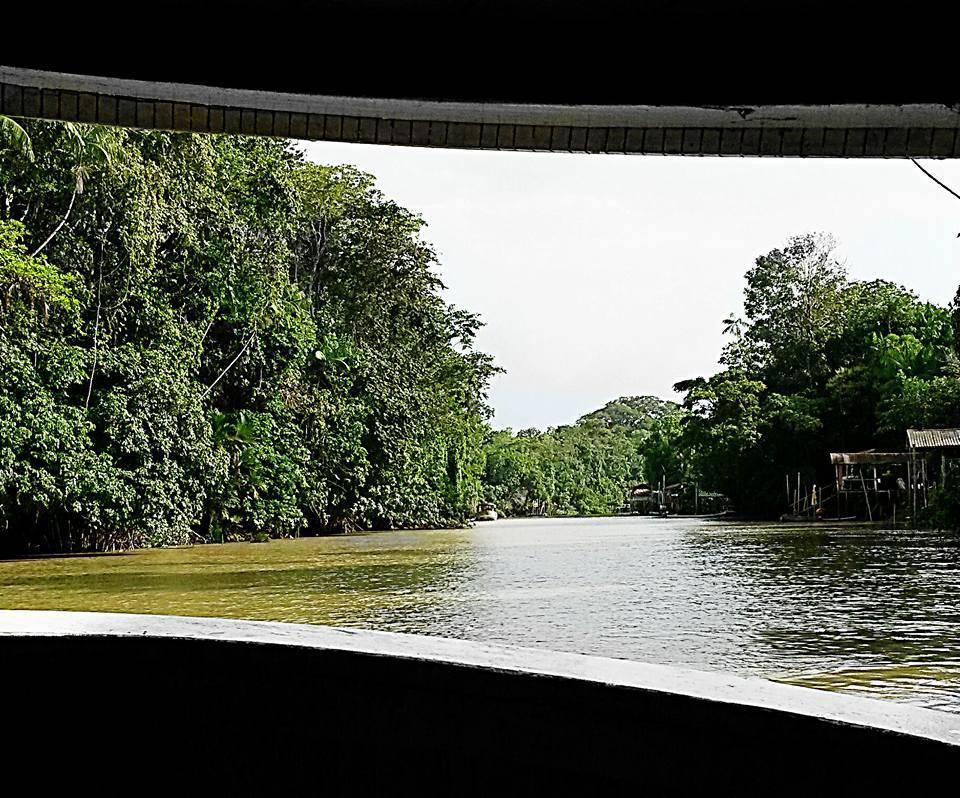 Ilha do Combu ponto do turismo ecológico e gastronômico da Amazônia