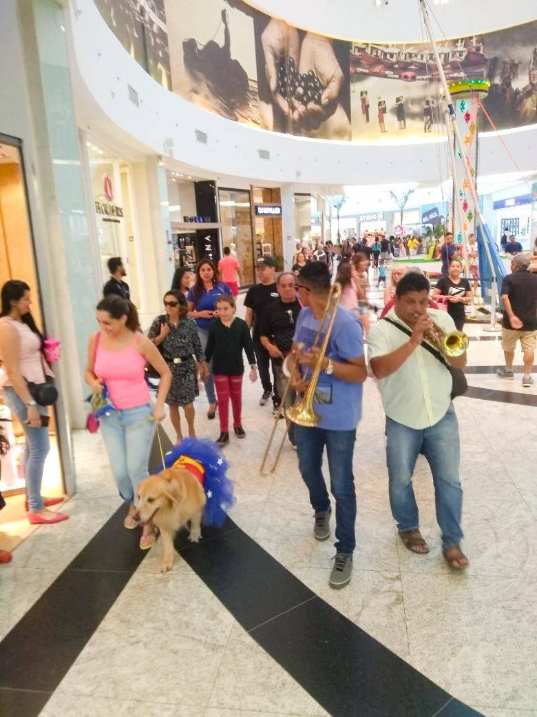 Carnaval para pets agita shopping de Belém neste final de semana